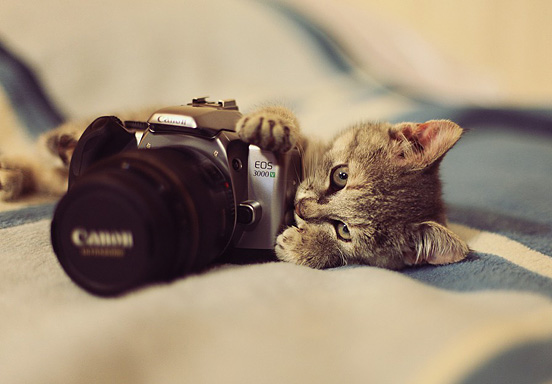 kreativer Fotograf
